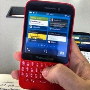 1367585265blackberry-r101367585265-mamini